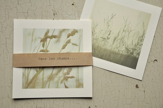 In the fields... Set of 5 postcards.