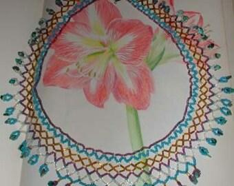 AMARYLIS Drawing in Prisma Color Pencils