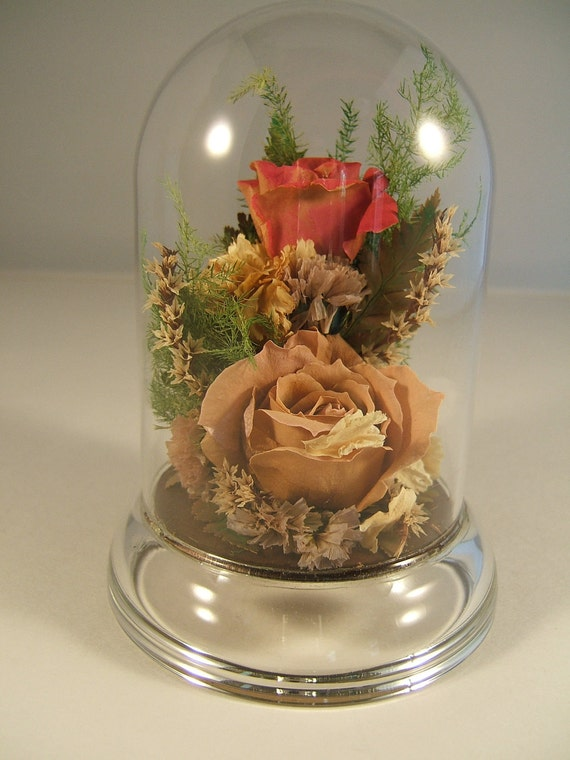 Preserved flowers under a glass dome pink by ladyrosetreasures for Rose under glass