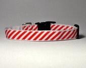 Puppermint Stripe Dog Collar MD