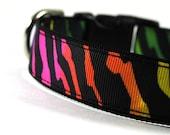 1 Inch Dog Collar Zealous Zebra LG