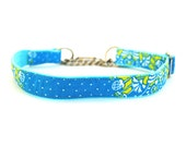 1 Inch Wide Martingale Dog Collar Entrechat