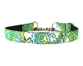1 Inch Wide Martingale Dog Collar Jeté