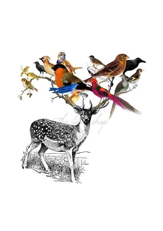 DEER BIRDY - 8x10 inch Print on A4 - Vintage Deer and Beautiful Birds