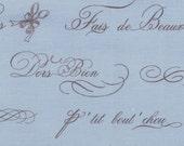 Bunny Hill Designs for Moda, Ooh La La, French Word in Sky 2831.16 - 1 Yard