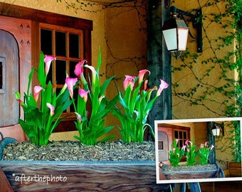 Fine Art Photography-Welcome Entry