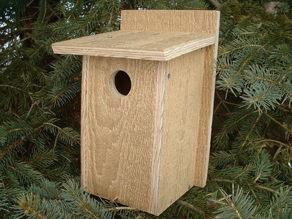 Blue Bird Bluebird Birdhouse Tree Swallow Nesting Box Chickadees Love It. Handmade Winter and Harsh Weather Protection