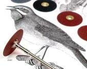 Sanding Disc Assortment- 50 Discs with Mini Mandrel
