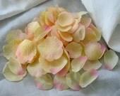 100 Blush Pink artificial silk Rose Petals for Wedding Decorations Centerpieces