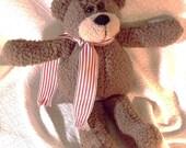 Cute Little Scarf Teddy