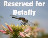 Random Act of Kindness - Reserved for Betafly
