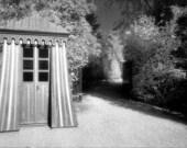 Curious Path Photography Print - Versailles France