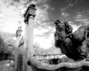Neptune - Photography Print - Florence
