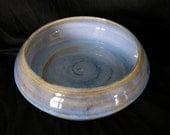 Blue Dish 2