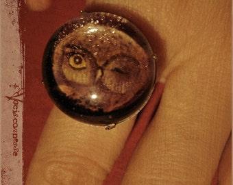 Woodland OWL RING - illustrated jewelry