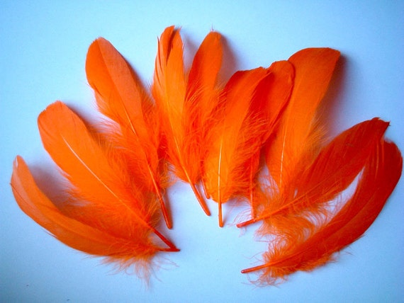 Bright Orange Fake Feathers, faux feather, fake feather, craft supplies, bird, chicken, duck, fire color, party, fancy, parade, show