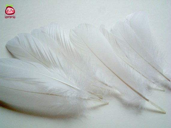 White Fake Feathers, artificial feather, faux feather, fake, faux, craft supplies, bird, chicken, duck, bright color, fancy, party, iammie