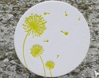 Spring Dandelion - Letterpress Coaster Set (8 per package)