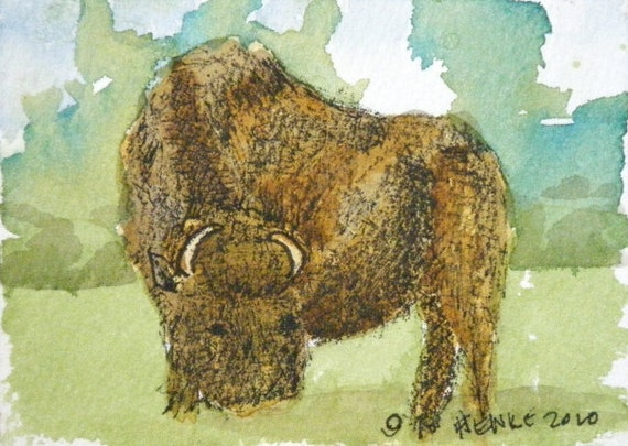 Buffalo ACEO by Nan Henke an Original Watercolor and Pencil painting of the Texas Hill Country