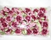 Satin Pink and Maroon Roses
