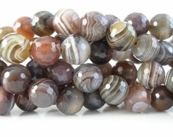 Botswana Agate 10 mm disco Faceted Cut Gemstone Beads Full Strand T003