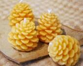 Beeswax Candles Tiny Pine Cones Pinecones set of 4