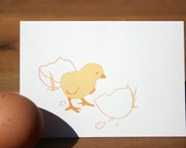 Chick and Egg Letterpress Note Set