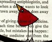 THE IMPORTANCE OF WOODEN SPATULAS--Original Ink Bird Illustration on Vintage Paper--DeadpanAlley--