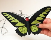 Soft Sculpture Tropical Butterfly Fiber Art Brookiana Exotic Butterfly Natural History Endangered Species Luxury Woodland Entomology Gift