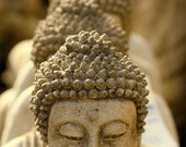 Tibetan Buddhas  -  peace love and light  10x15 fine art photograph print