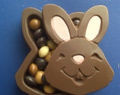 Milk Chocolate Bunny Box Filled with chocolate skittles