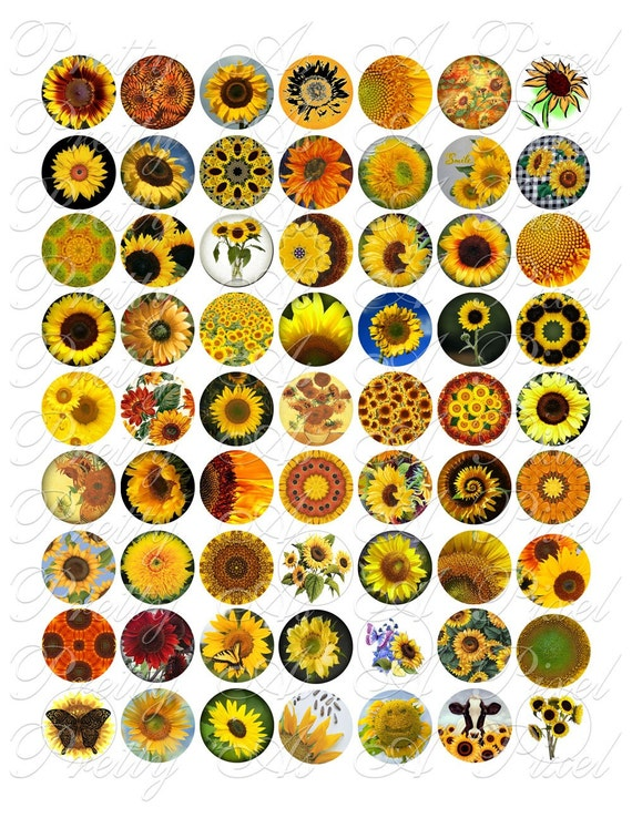 Sunflowers - One Inch Circles - INSTANT DOWNLOAD - Digital Collage Sheet