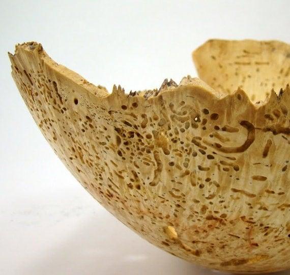 The Ancient Ones - Wormy Box Elder Burl Bowl