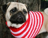 Peppermint Doggy Sweater