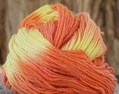 Malabrigo Kettle Dyed Pure Merino Wool 216 yards Citrus 66
