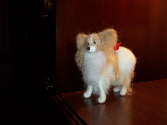 Papillion Wool Dog