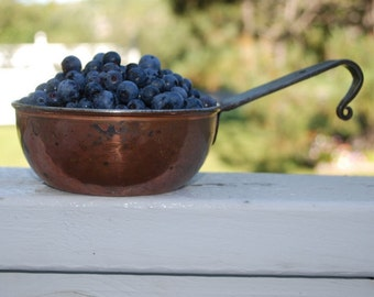 Organic Blueberry Jam 8 oz Fresh Handmade Farmers Market Brunch