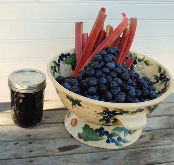 Organic BlueberryRhubarb Jam Blueberry and Rhubarb