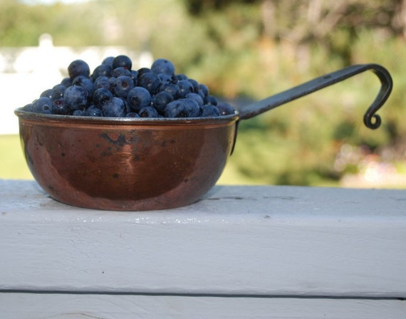 Organic Blueberry Jam 8 oz Fresh Handmade Farmers Market Brunch