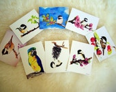 Assorted Postcards-from original watercolor, set of 8