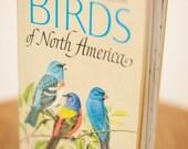 Birds of North America / illustrated by Arthur Singer / 1966