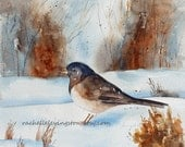 Large Winter Bird PRINT  / Wall art  (Dark Eyed Junco Bird art PRINT from Watercolor Painting 11x14) Black Bird in snow / rust copper brown