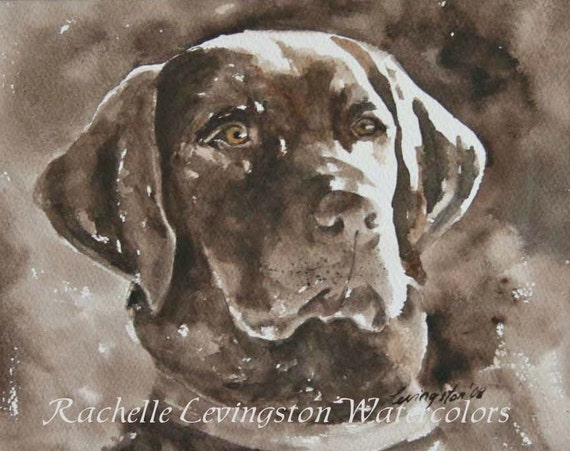 Chocolate lab PRINT 8 x 10 (from Watercolor lab Painting) Lab art print / Dog Print/ Dog art Print