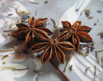 Star Anise dried herb, 8 ounces 1/2 pound