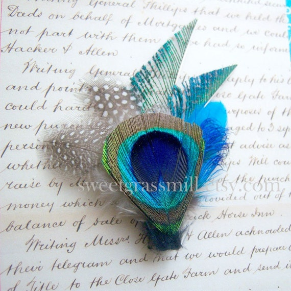 Windsorette - Peacock and Polka Dot Feathers