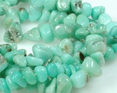 Mint Green CHRYSOPRASE 6mm to 10mm organic tumbled chunky nugget beads -  full strand