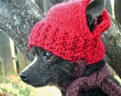 RED APPLE Hand Knit Dog hat