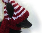 Wheres Waldo hand knit hat dog