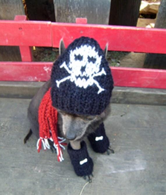 PIRATE HAT / LEGGINGS Dog