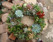 "12"" Succulent Wreath, Featured in Birds and Blooms and Phoenix Magazines, Etsy Front Page"